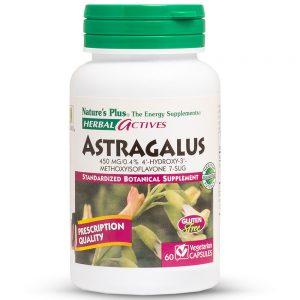 Herbal Actives АСТРАГАЛ – 450mg за Силен имунитет, Сила и Енергия от Natures
